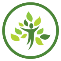 ARBRE REFORESTACTION GREEN FRIDAY